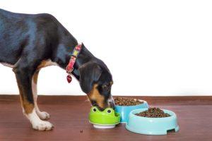 croquettes naturelles chiens